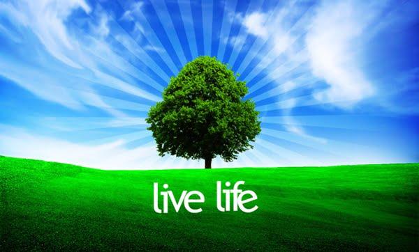 perbedaan life dan live
