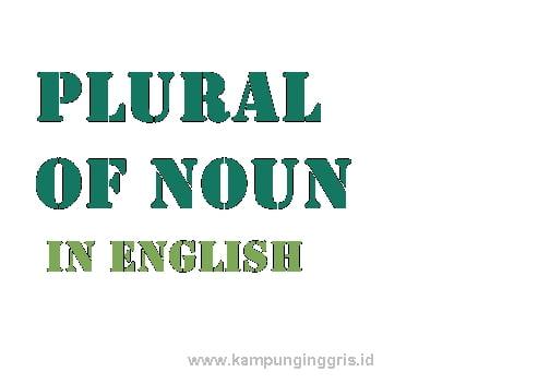 Memahami Lebih Dalam Pengertian Dan Contoh The Plural Of Noun